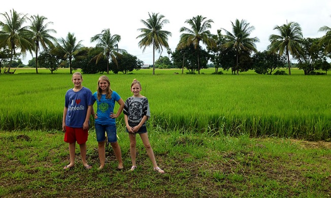 girls in rice field phitsanulok
