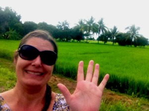 "The rice fields are ready for harvest in Northern Thailand! ""Then he said to his disciples, 'The harvest is plentiful but the workers are few. Ask the Lord of the harvest, therefore, to send out workers into his harvest field.'"" - Matthew 9:37-38 (NIV)"
