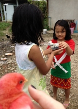 Kachin (Burmese) cuties playing with their blue and pink baby chicks.