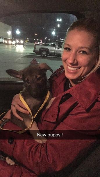 I got a new granddog! Her name is Waffles, and she's a German Shepherd.