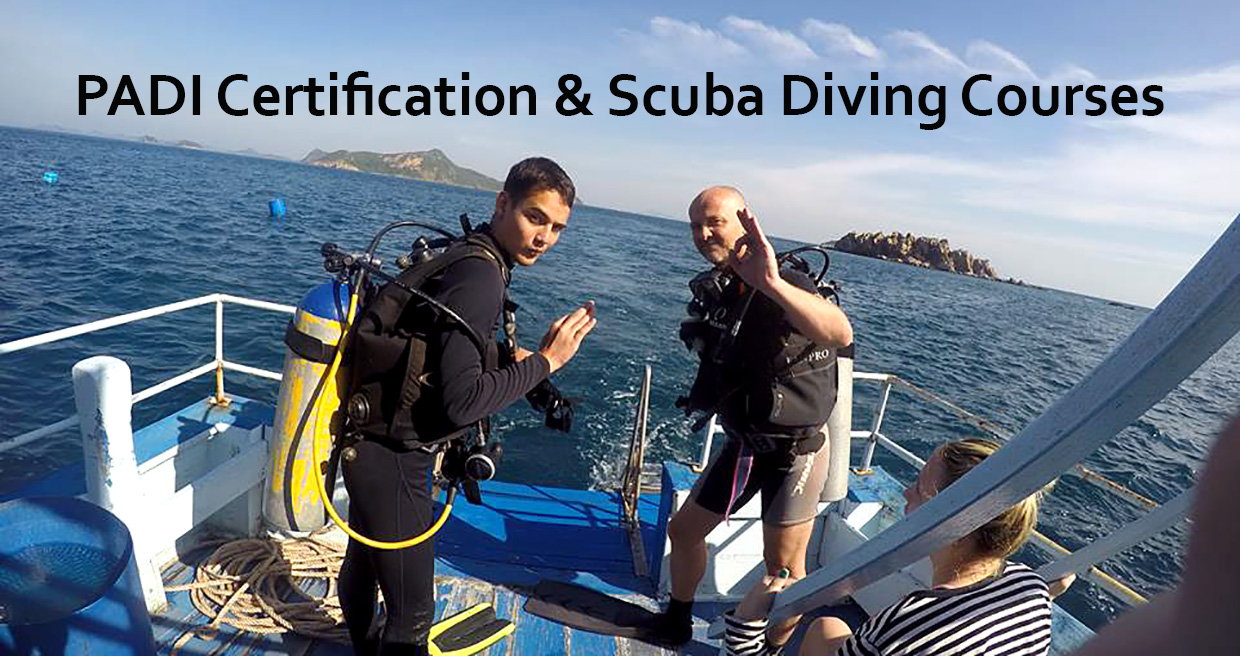PADI Certification and Scuba diving courses link